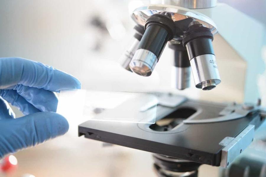 Doenças raras (Parte V): Diagnóstico e tratamento