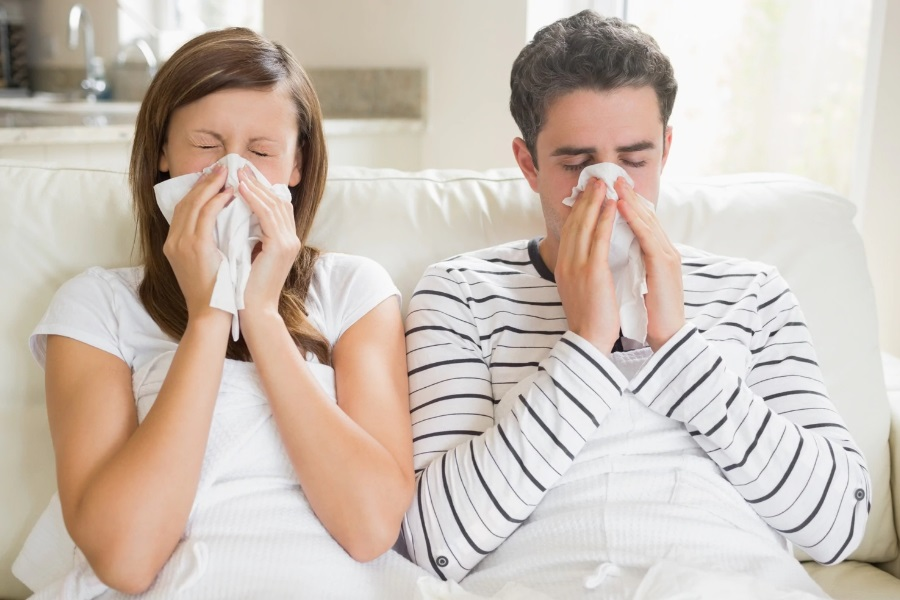 Parte II: Tipos de gripes