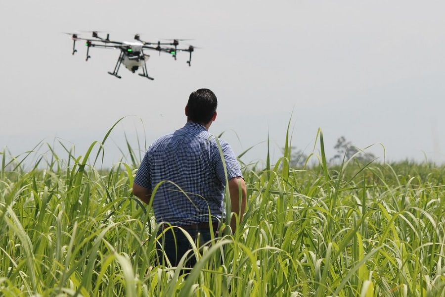 Tecnologia estimula agricultura