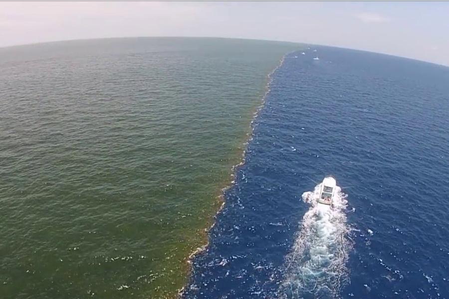 Por que as águas do oceano não se juntam?