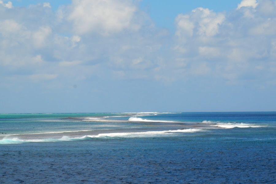 Celebre o Dia Mundial dos Oceanos