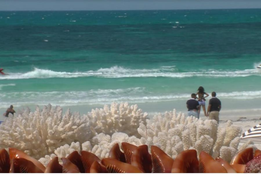 Chocas Mar teve ocupação a 100% no fim-de-semana longo