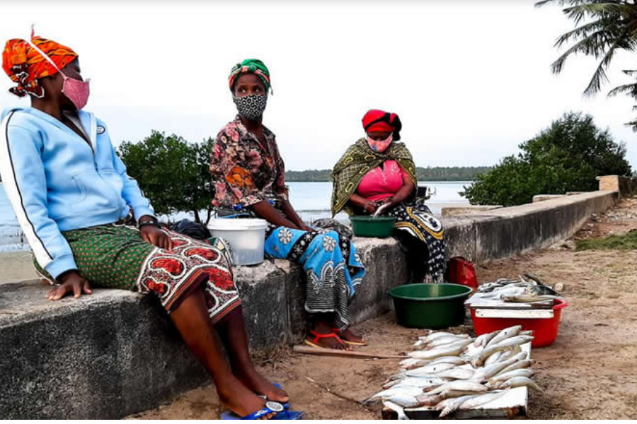 Pescadores recorrem à veda voluntária para evitar escassez de pescado
