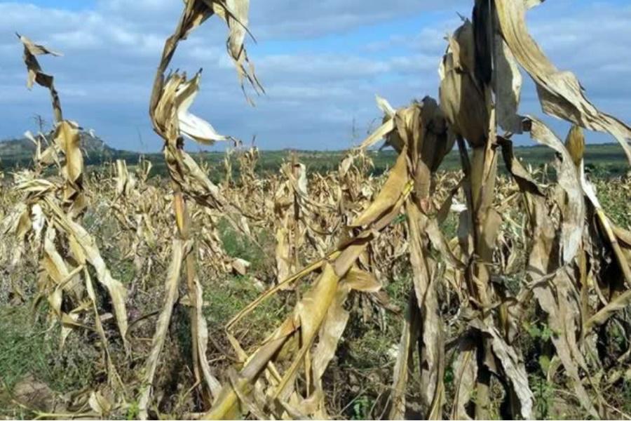 Moçambique terá equipamento para previsão da seca