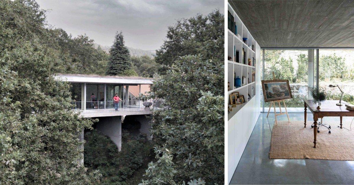 """""""Aqui a estrela é a natureza, não o arquiteto"""": Casa na árvore em Ponte da Barca"""