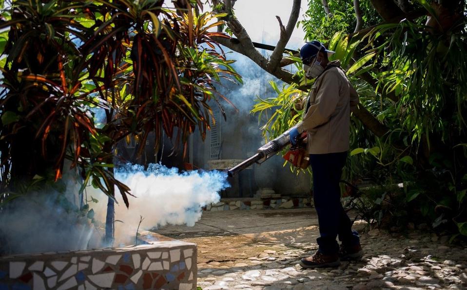 Ásia: China erradica malária depois de 70 anos de luta contra a doença