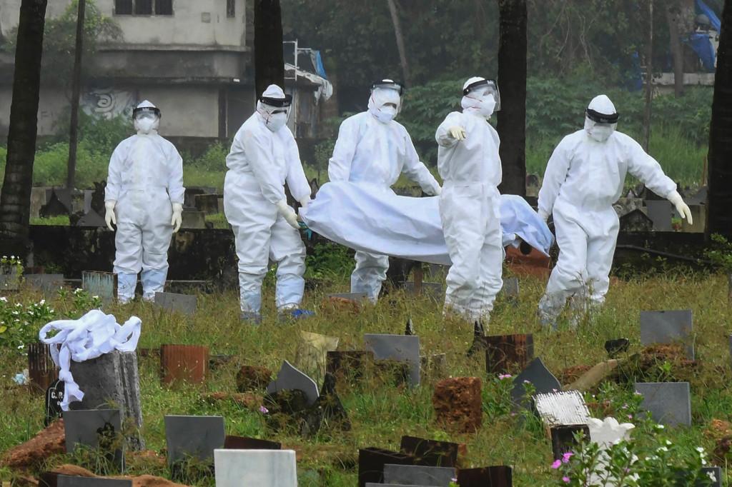 Índia: Nipah, um vírus raro mais mortal do que o SARS-CoV-2